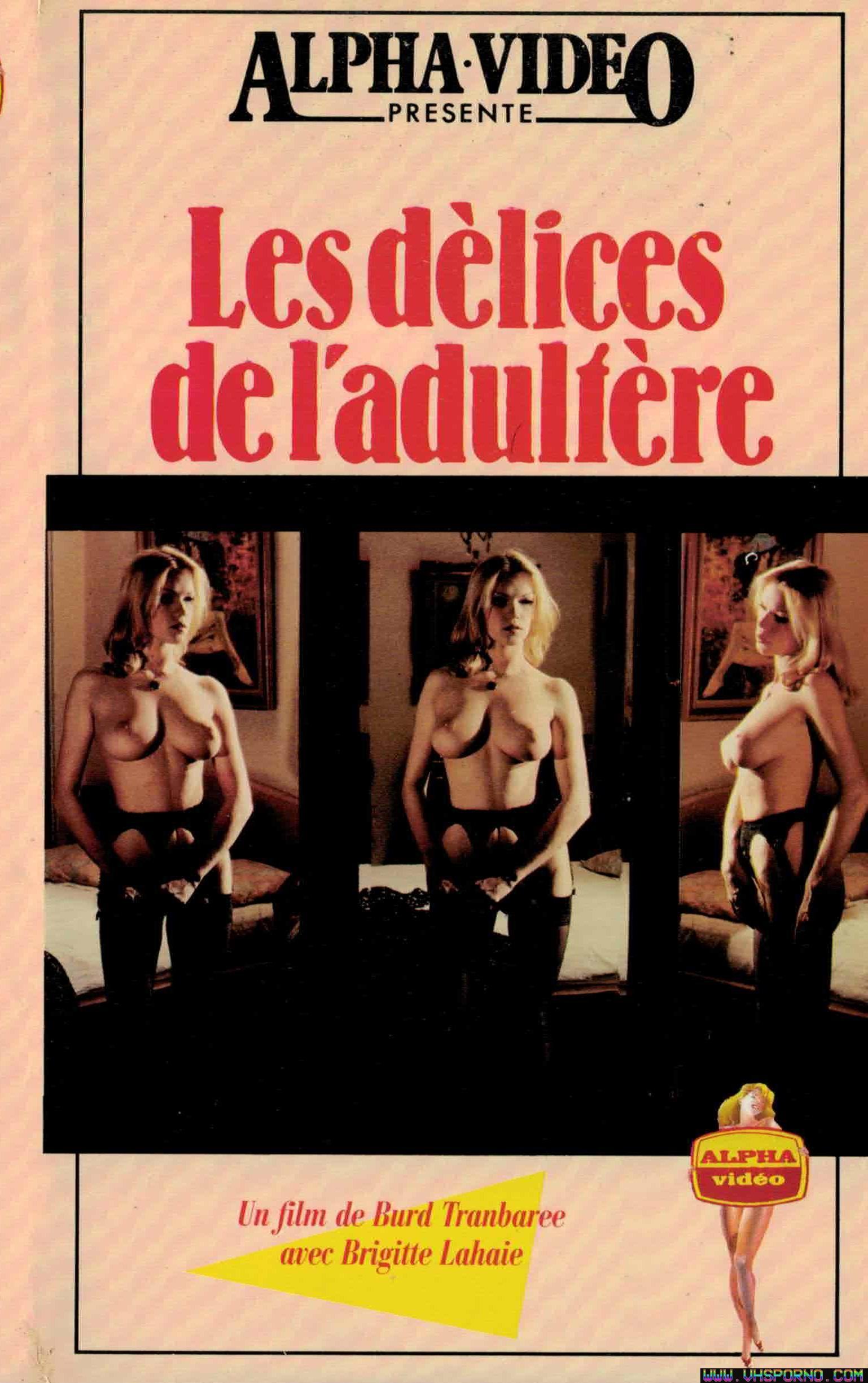 Pochette de Les délices de l'adultère • VHS Porno