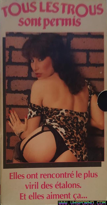 Pochette de Chronique VHS de Tous les trous sont permis, un film porno sorti en 1981